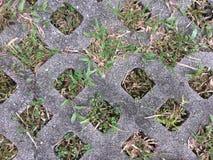 El hormigón que pavimentaba la hierba verde en agujeros utilizó la acera fotos de archivo libres de regalías