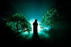 El horror Halloween adornó imagen conceptual Muchacha sola con la luz en el bosque en la noche Silueta de la muchacha que se colo Foto de archivo libre de regalías