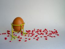 El huevo de Brown del color claro en una ayuda se prepara para el día de fiesta Pascua en un fondo blanco derramado con rojo bril fotos de archivo libres de regalías