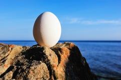 El huevo de gallina Imagen de archivo libre de regalías