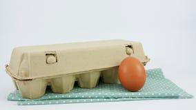 El huevo de gallina fresco con la caja de papel del panel imágenes de archivo libres de regalías