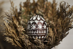 El huevo de Pascua en Jericó subió Imagenes de archivo
