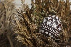 El huevo de Pascua en Jericó subió Fotos de archivo libres de regalías
