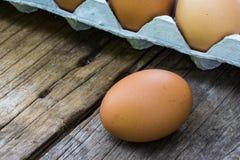 El huevo del pollo en la madera y el pollo egg en huevos del panel Foto de archivo libre de regalías