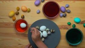 El huevo del pollo se sumerge en un tinte amarillo almacen de video