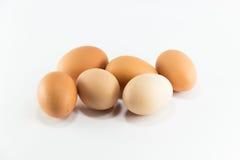 El huevo eggs el pollo del healt de la comida de la proteína Foto de archivo libre de regalías