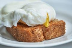 El huevo escalfado está en el primer de la tostada Imagen de archivo libre de regalías