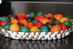 El huevo tomó el sol Foto de archivo libre de regalías