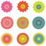 El icono fijó con 9 diversas flores, aisladas en blanco, vector Imágenes de archivo libres de regalías