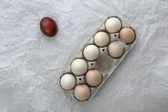 El impar - intolerancia, huevo de Pascua del huevo fotografía de archivo