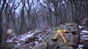 El indicador en el bosque para que viajeros eviten conseguir perdido metrajes