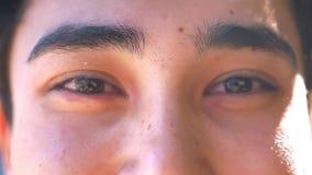 El individuo asiático sincero está mirando la cámara exacto, no centellando, los ojos del marrón del primer, pelo negro almacen de metraje de vídeo