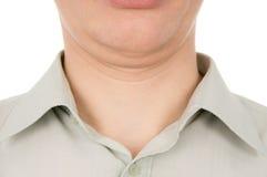 El individuo la segunda barbilla Imagen de archivo