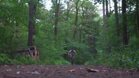 El individuo monta una bicicleta en el marco almacen de video