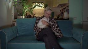 El individuo se sienta en un sofá azul y acaricia un gato blanco que miente en su revestimiento 4K almacen de metraje de vídeo