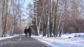 El individuo y la muchacha están caminando a través del parque en invierno almacen de video