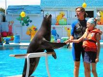 El instructor de animales salvajes en el trabajo