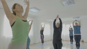 El instructor femenino hermoso de la yoga que le enseña a clasificar hecho de nuevo estirar de la gente regular presenta en un es almacen de metraje de vídeo