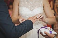 El intercambio de los anillos de bodas 7659 Imagen de archivo libre de regalías