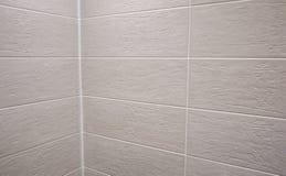 El interior del cuarto de baño se adorna con las tejas hermosas con el paisaje de la naturaleza fotografía de archivo