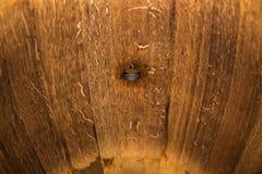 El interior del roble barrels para el vino con un agujero Imágenes de archivo libres de regalías