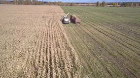 El interruptor del forraje de la visión aérea vierte la masa del maíz en el remolque metrajes