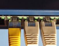 El interruptor del router del módem con el enchufe de Ethernet RJ45 vira hacia el lado de babor Foto de archivo libre de regalías
