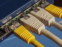El interruptor del router del módem con el enchufe de Ethernet RJ45 vira hacia el lado de babor Imágenes de archivo libres de regalías