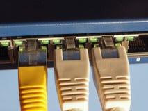 El interruptor del router del módem con el enchufe de Ethernet RJ45 vira hacia el lado de babor Fotografía de archivo libre de regalías