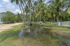 El inundar en el parque por la playa fotos de archivo