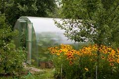 El invernadero adentro Imagen de archivo