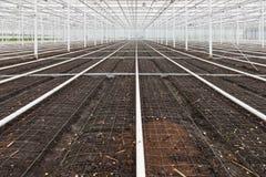 El invernadero vacío con el suelo se preparó para el cultivo de plantas Imagen de archivo libre de regalías