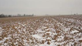 El invierno arable arado del campo alineó con una pequeña capa cubierta de nieve, los álamos de los árboles y hermoso solitarios, almacen de metraje de vídeo
