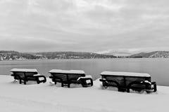 El invierno Benches blanco y negro Fotos de archivo