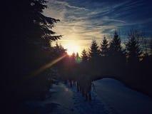El invierno, congelado está en el aire Fotografía de archivo libre de regalías
