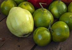 El invierno da fruto en el piso de madera, membrillo, granada, imágenes del mandarín Fotos de archivo