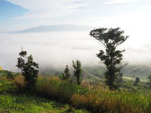 El invierno deja la niebla imagenes de archivo