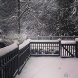 El invierno está aquí 2 Foto de archivo libre de regalías
