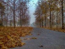 El invierno está viniendo y una opinión del camino Fotos de archivo libres de regalías