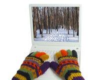 El invierno está viniendo Fotografía de archivo libre de regalías