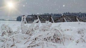 El invierno que nieva ajardina con la barrera del sol y de la nieve metrajes