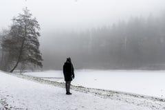 El invierno solo de la trayectoria que camina y de los árboles de la muchacha se pregunta la tierra Imagen de archivo libre de regalías