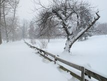 El invierno viene a la vecindad Fotos de archivo libres de regalías
