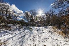 El invierno viene y las cubiertas de nieve las cuestas del bosque del ` de Herreria del ` en el EL Escorial, Madrid, España imagenes de archivo