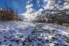 El invierno viene y las cubiertas de nieve las cuestas del bosque del ` de Herreria del ` en el EL Escorial, Madrid, España imágenes de archivo libres de regalías