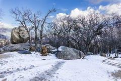 El invierno viene y las cubiertas de nieve las cuestas del bosque del ` de Herreria del ` en el EL Escorial, Madrid, España foto de archivo