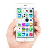 El iPhone blanco 6 de Apple que exhibe homescreen Fotografía de archivo libre de regalías