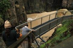 El ir abajo a las cuevas notables en montaña tropical Fotografía de archivo