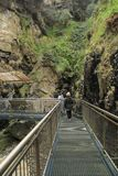 El ir abajo a las cuevas notables en montaña tropical Fotografía de archivo libre de regalías