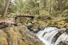 El ir de excursión del ópalo de Oregon de la cala imagen de archivo libre de regalías